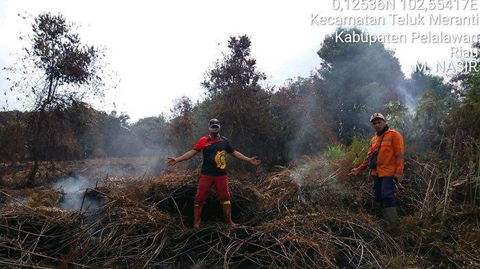 Api Dapat Dikuasai, Karhutla di Pelalawan Berhasil Dipadamkan,Tim Darat dan Udara Lakukan Hal Ini