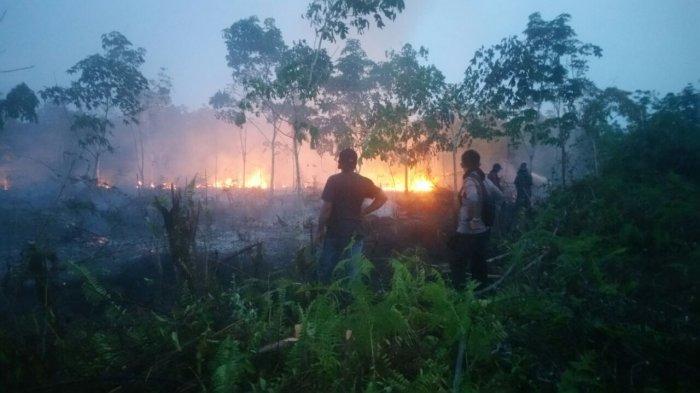 BPPBD Riau: Masih Ada Beberapa Titik Api tapi Cepat Diatasi