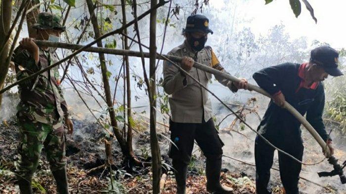 12 Hotspot Terpantau di Pelalawan, Ada Juga Titik Api Karhutla, Ini yang Dilakukan Tim Gabungan