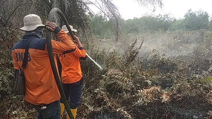 Terkait Status Siaga Darurat Karhutla di Dumai Riau, Ini Kata Kalaksa BPBD