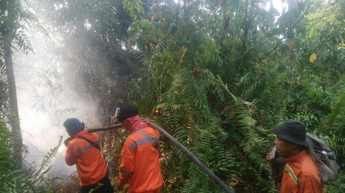 Angin Kencang Api Kembali Berkobar, Tim Gabungan Pelalawan Pedamkan Kebakaran Lahan di Tiga Lokasi