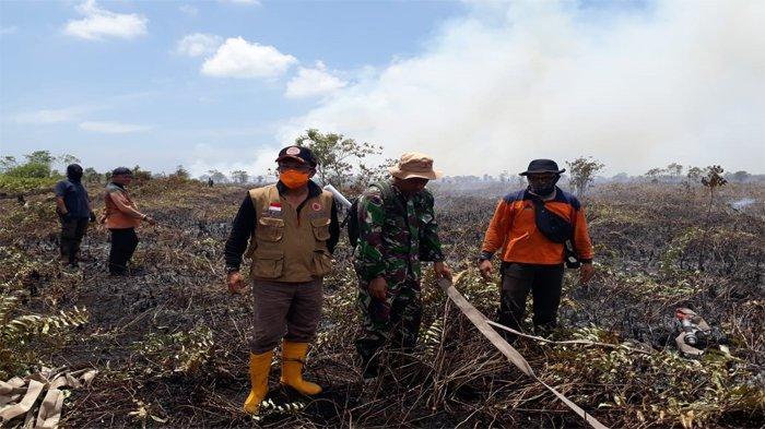 Karhutla Masih Landa Tiga Kecamatan di Bengkalis, Sisa Api Kembali Menyala Meski Diguyur Hujan