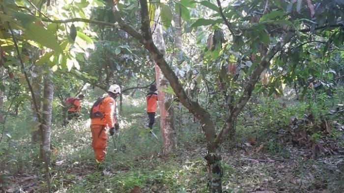 Hampir Sepekan Hilang Di Hutan Lima Puluh Kota, Pencarian Warga Riau Masih Terus Dilakukan