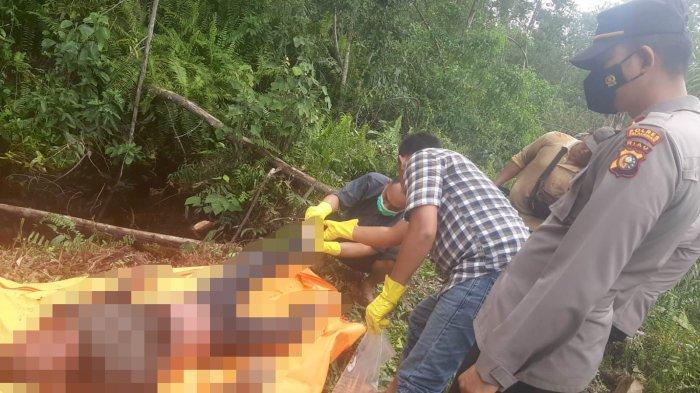 Misteri Mayat di Kebun Sawit Riau, Benarkah Sengaja Hilangkan Nyawa Sendiri? Polisi Tunggu Autopsi
