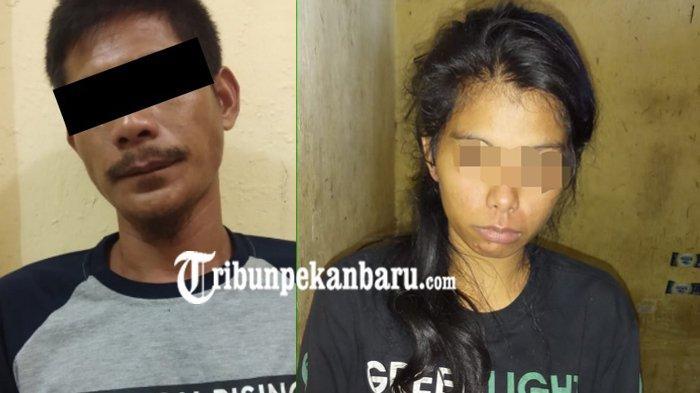 Pengedar Narkoba di Tambusai Riau Ditangkap Polisi, IRT Diamankan Setelah Membeli Sabu-sabu