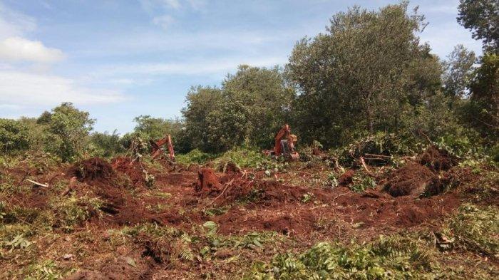 Kemitraan strategis Kelompok Tani Hutan Pebadaran dan PT Arara Abadi tingkatkan ekonomi masyarakat
