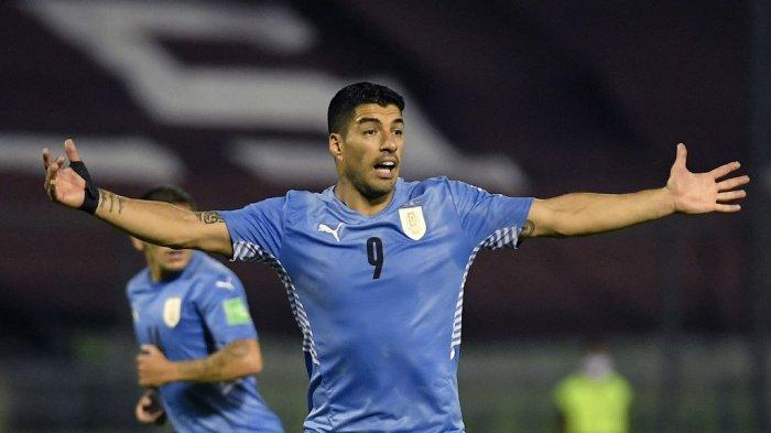 Penyerang Uruguay Luis Suarez memberi isyarat selama pertandingan sepak bola kualifikasi Amerika Selatan untuk Piala Dunia FIFA Qatar 2022 melawan Venezuela di Stadion Olimpiade UCV di Caracas pada 8 Juni 2021.