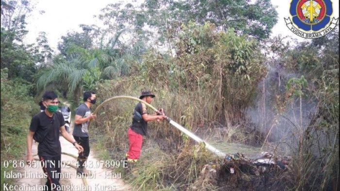 Riau Mulai Diintai Karhutla, Titik Api Terpantau di Pelalawan, BPBD Padamkan Kobaran Api