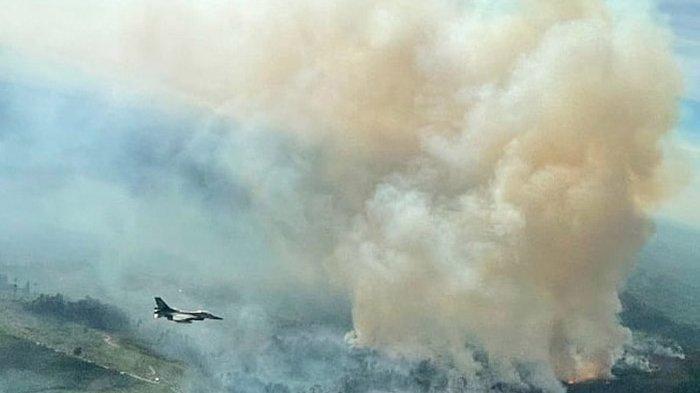 Karhutla di Riau, Ratusan Titik Panas Terpantau Hari Ini, Paling Banyak di Pelalawan
