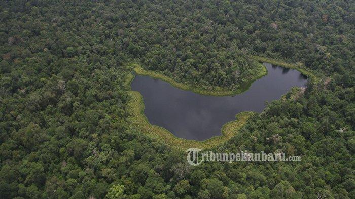 SEGERA, Taman Nasional Zamrud sebagai Objek WISATA ALAM di Riau, Dalam Pembahasan BBKSDA Riau