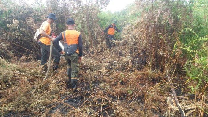 Waspada Asap Tebal Bisa Berakibat Muncul Api, Kebakaran Lahan di Riau Tinggal Pendinginan
