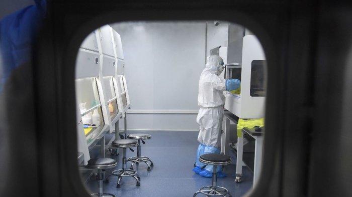UPDATE Kasus Virus Corona Per 23 Februari 2020, 2.400 Orang Meninggal, 76.000 Terinfeksi