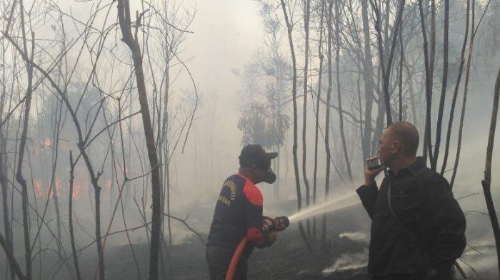 Lahan di Depan dan Belakang Kantor Terbakar, Asap Kepung Polsek Gunung Kijang, Bintan