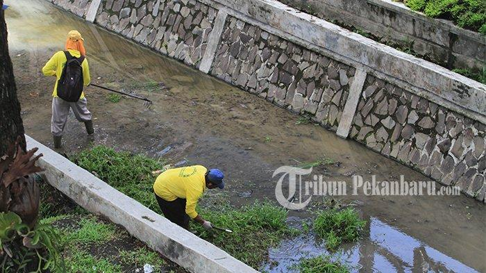 Sejumlah Wilayah di Pekanbaru Terancam Banjir, Master Plan Pengendalian Banjir Tak Kunjung Rampung