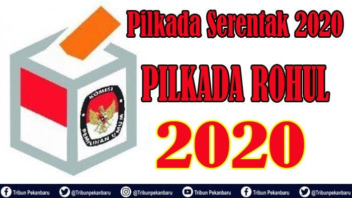 Pilkada Riau 2020 dalam Pilkada Serentak 2020, Hamulian Daftar ke Demokrat untuk Pilkada Rohul 2020