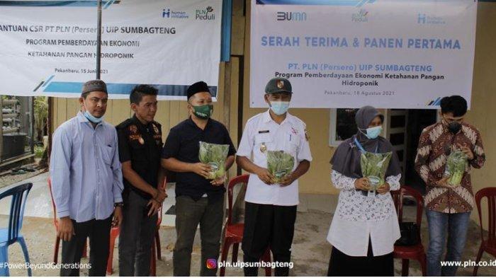 Kelompok Wanita Tani Perumahan Griya Sakinah Sejahtera yang tergabung kedalam Kelompok Moms Sakinah Hidroponik melaksanakan panen pertama pelaksanakan penanaman sayur dengan menggunakan metode tanam hidroponik. Kegiatan panen pertama ini turut dihadiri oleh Wakil Walikota Pekanbaru, Bapak Ayat Cahyadi S.Si, Manager Perizinan dan Komunikasi PLN UIP SUMBAGTENG, Bapak Ishra Khalilur Rachman dan Kepala Cabang Human Initiative Riau, Ibu Nofri Satriawati.