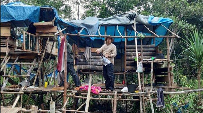 Perambah Hutan Beraksi Lagi di SM Kerumutan Pelalawan, Patroli Tim BKSDA Riau Temukan Ini di Lokasi