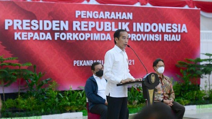 Presiden Jokowi Dorong Kerja Sama Daerah untuk Bersama Tangani Pandemi Covid-19