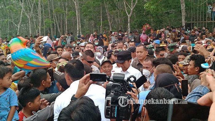 BREAKING NEWS: Jokowi Didampingi Sejumlah Menteri Tiba di Desa Merbau Kabupaten Pelalawan Riau