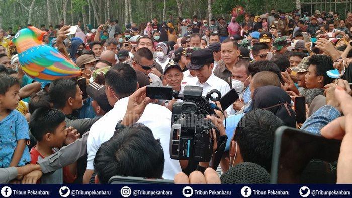Presiden Joko Widodo akan Berkunjung ke Riau, Anggota Dewan Minta Tidak Terjadi Kerumunan
