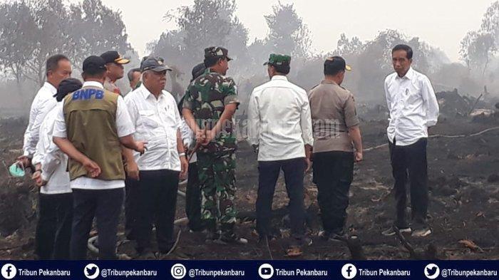 Tak Guna Jokowi ke Riau, Kita Butuh Api Padam Asap Hilang, Ucapan Anggota DPRD Riau dari PKB