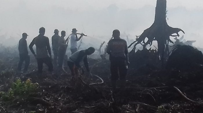 Riau Berhasil Pertahankan Tiga Tahun Tanpa Asap, Ancaman Kekeringan Tahun Depan Lebih Parah