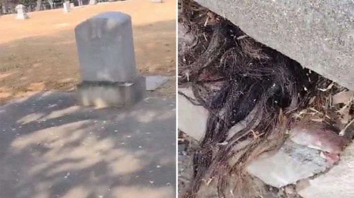 Menyembul Dari Celah Kuburan Tua, Rambut Hitam Dan Panjang Membuat Warganet Bergidik