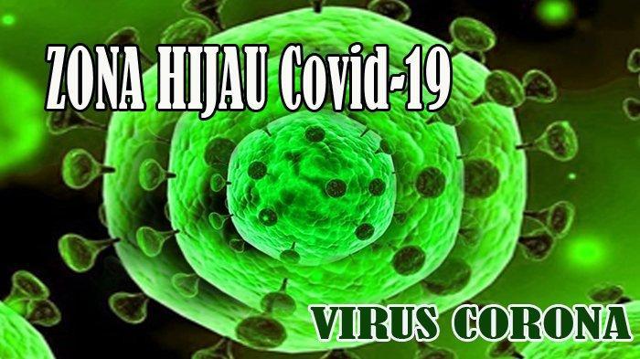 INI Daftar 104 Kabupaten dan Kota di Indonesia yang Masuk Zona Hijau Virus Corona