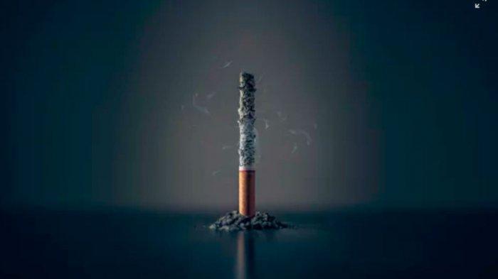 Anda Merokok? Tips Ini Wajib Anda Coba untuk Membersihkan Paru-paru, Gunakan Lima bahan Alami Ini