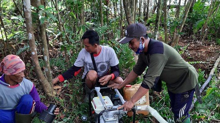 4 Hotspot Terpantau di Pelalawan Riau, BPBD Pastikan Bukan Titik Api, Begini Penjelasan Abu Bakar
