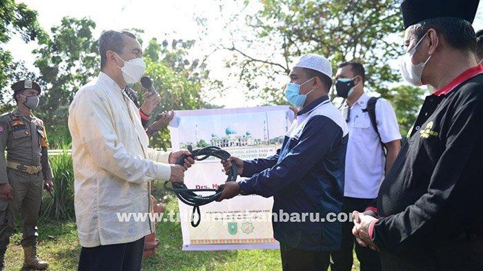 FOTO : Besarnya Sapi Kurban Presiden Jokowi di Riau - sapi-kurban-di-riau-punya-jokowi.jpg