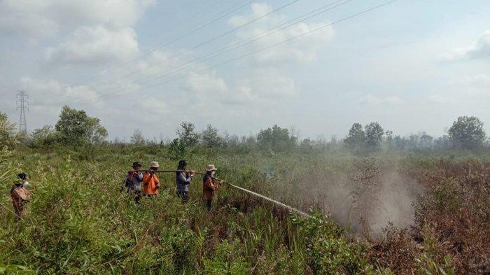 Karhutla di Riau, 20 Hektare Lebih Lahan Terbakar di Dumai dalam 10 Hari