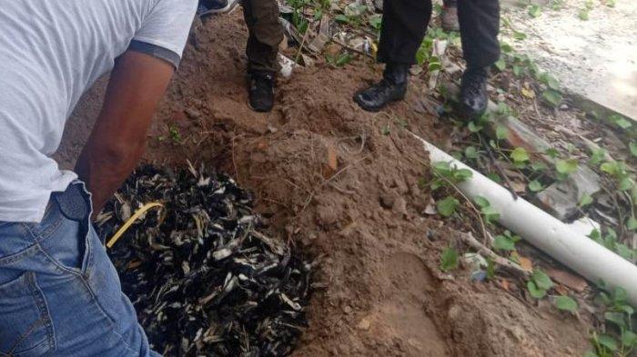 Satpolair Polres Bengkalis Tetapkan Lima Tersangka Penyelundupan Burung Kacer dari Malaysia