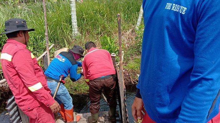 Sedot Air Parit, Petugas Padamkan 3 Ha Lahan Gambut di Pelalawan yang Terbakar,Hal Ini Jadi Fokus
