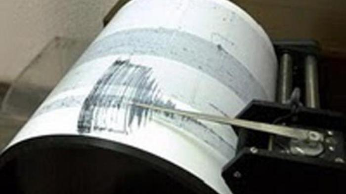 Gempa Bumi Guncang Pesisir Selatan Magnitudo 5,2, Getaran Terasa Sampai ke Padang dan Kagetkan Warga