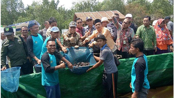 Bahagianya Bupati Lihat Masyarakat Mampu Kembangkan Ikan di Kanal Gambut