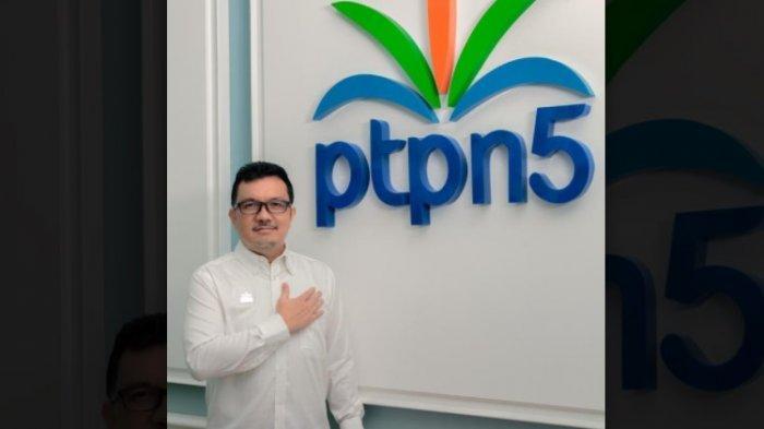 Bisnis Sapi Petani Mitra PTPN V Panen Cuan
