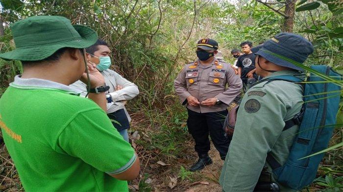 Tak ada Jejak dan Bekas Cakaran, Kapolsek Kerumutan Pastikan Tak Ada Serangan Harimau di Pelalawan