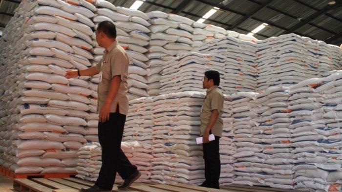 Fantastis, Pemerintah akan Impor 1 hingga 1,5 Juta Ton Beras