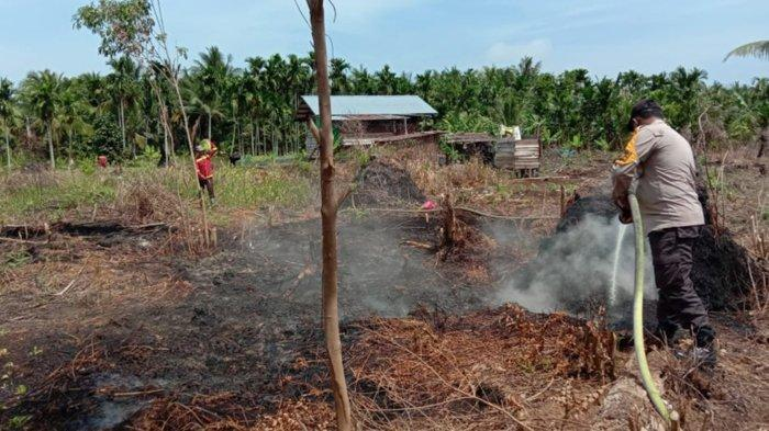 Siaga Darurat Karhutla di Riau, Tiga Karhutla di Pelalawan, Segera Tetapkan Siaga Darurat Karhutla