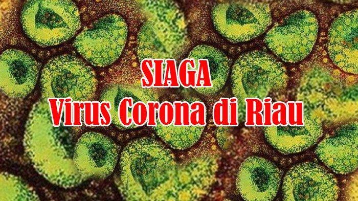 Antisipasi Penyebaran Virus Corona, Dinkes Rohul Bentuk Tim Siaga Covid-19