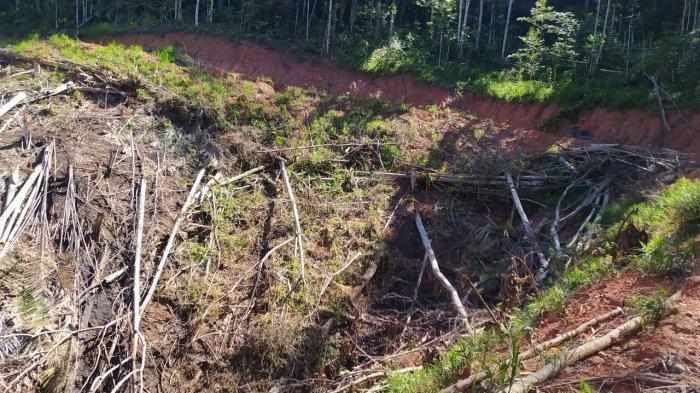 Mengubah Cara Tradisional dalam Memanfaatkan Hutan Desa di Pemandang