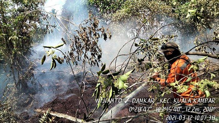 Petugas gabungan melakukan pemadaman api Karhutla di Desa Sokoi dan Desa Teluk Beringin Kecamatan Kuala Kampar Kabupaten Pelalawan, Sabtu (13/3/2021).