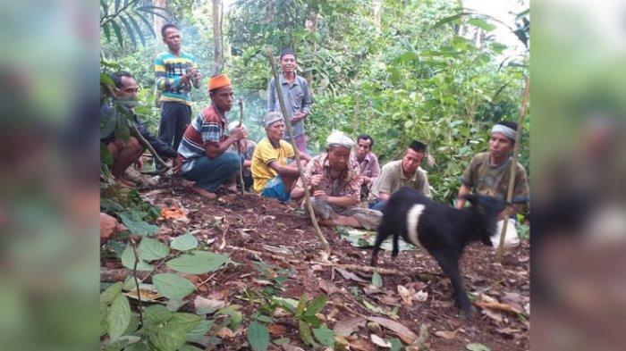 STORY - Cara Suku Talang Mamak Halau Covid-19, Persembahkan Kambing Hitam untuk Leluhur