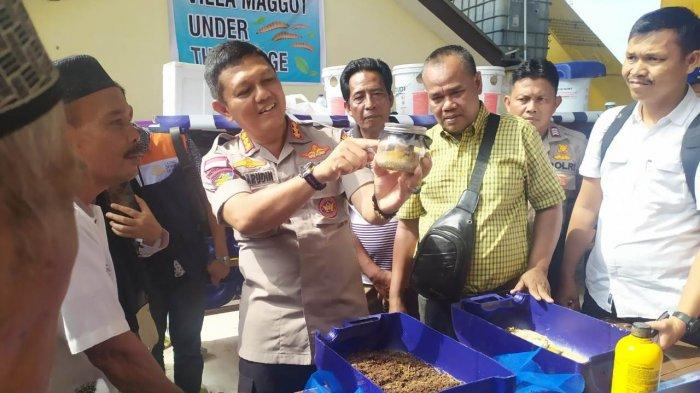 STORY - Maggot Tentara Lalat Hitam Jadi Asa Baru Perekonomian Warga Rumbai Pesisir Pekanbaru