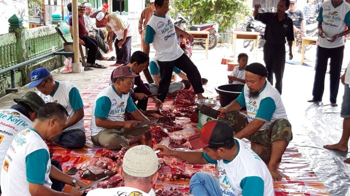 Ada Temuan Cacing dalam Organ Dalam Hewan Kurban di Pekanbaru