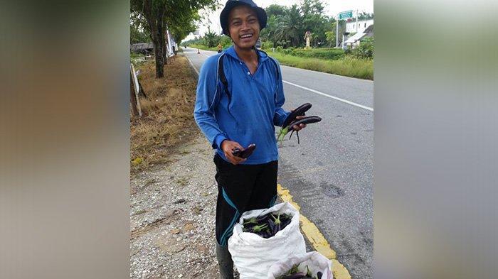 STORY - Syaiful Bahri, Lulusan UIN Suska Riau yang Gemar Bertani Hingga Belajar ke Jepang