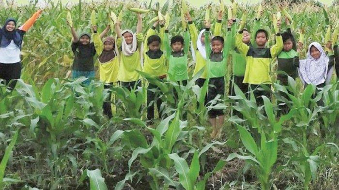 Taman Agrowisata Tenayan Raya Nan Nyaman dan Sejuk, Cocok untuk Edukasi Anak-anak