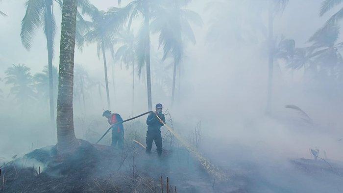 BREAKING NEWS: Hotspot di Riau Naik Drastis, Terdata 169 Titik Panas, Karhutla di Riau Berlanjut?