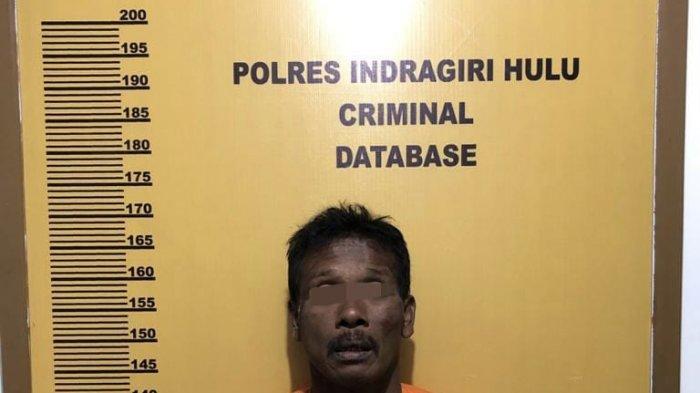Bikin Capek,Polisi Kejar-kejaran dengan Pengedar di Kebun Sawit, Tertangkap, Eh Barang Bukti Tak Ada